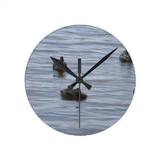 3024 Ducks in water b Round Clock
