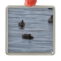 3024 Ducks in water Metal Ornament