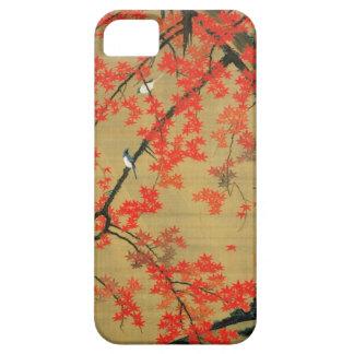 30. 紅葉小禽図, arce y pequeños pájaros, Jakuchū del 若冲 Funda Para iPhone SE/5/5s