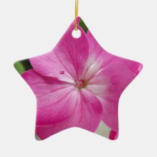 30 2 jpg ornaments para arbol de navidad
