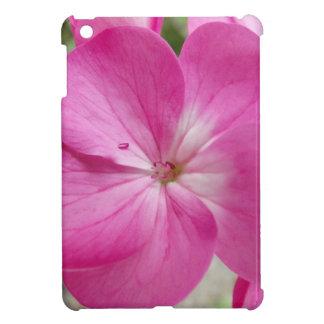30 (2).jpg iPad mini case