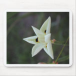 30 de abril flor Collecion del jardín Tapete De Raton