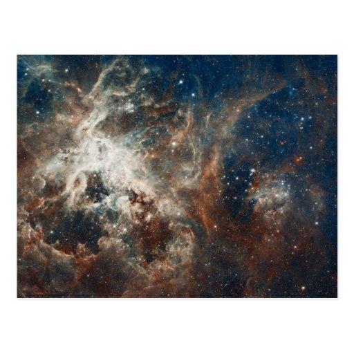 30 Doradus Nebula and Star Clusters Postcard