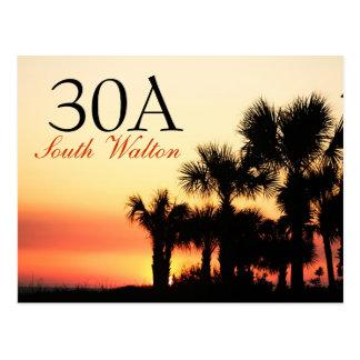 30A - South Walton Palm Tree Sunset Postcard