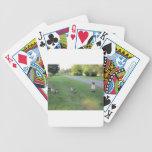 311778_135733203190700_1619317750_n.jpg baraja de cartas