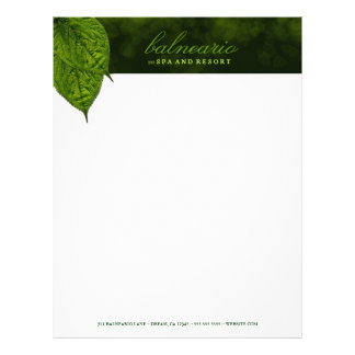 311-Dream Leaf Letterhead
