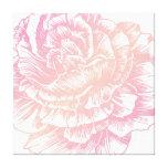 311 Le Plush Fleur Creamy Pink Stretched Canvas Print