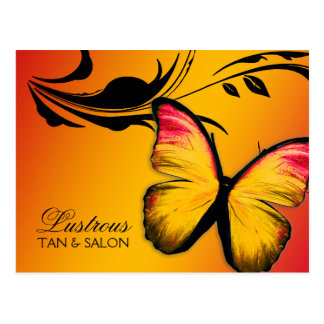 311 Lustrous Butterfly Sunset Postcard