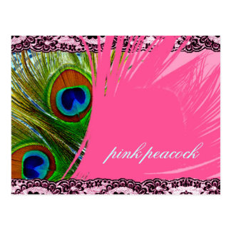 311 Pink Peacock Lace Postcard