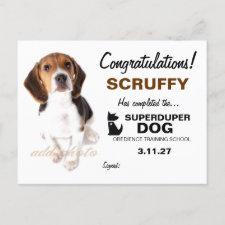 311-Super Duper Dog Certificate Postcards