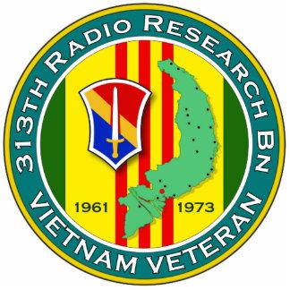 313th RR Bn - ASA Vietnam Cutout