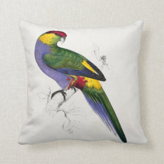 #31-Red-capped parrakeet-male Throw Pillow