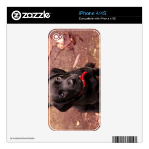 huge discount d2416 2adf0 Lab Computer, Laptop, Tablet, & Video Game Skins | Zazzle