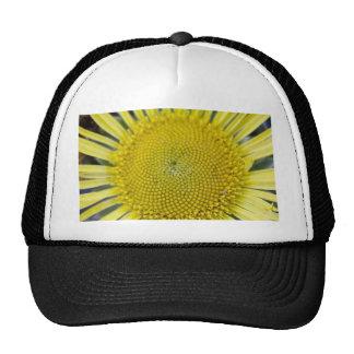 3214 Sunflower Detail 2 xs Hats