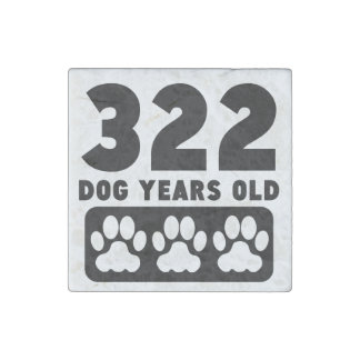 322 Dog Years Old Stone Magnet
