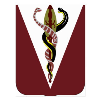 325o Batallón de la ayuda de la brigada Tarjeta Postal