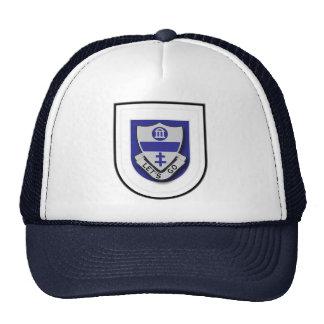 325th Infantry Regiment - Airborne flash Trucker Hat