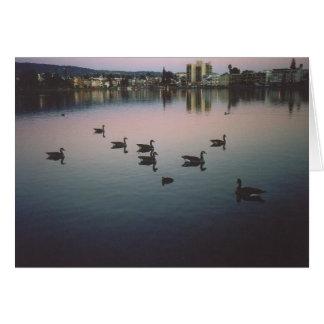 32. Geese at Sunset, Lake Merritt, Oakland, CA Card