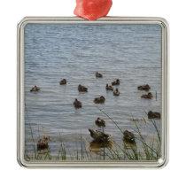 3415 Ducks by grass Metal Ornament