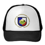 345th PsyOps Co - Airborne Hats