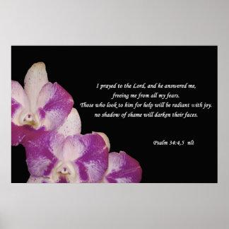 34:4,5 del salmo poster