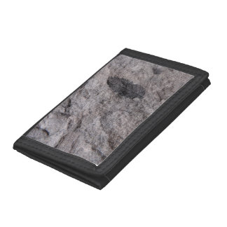 350 Million Year Old Plant Fossil Printed Trifold Wallets