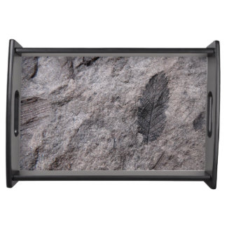 350 Million Yr. Old Plant Fossil Photo Printed Service Tray