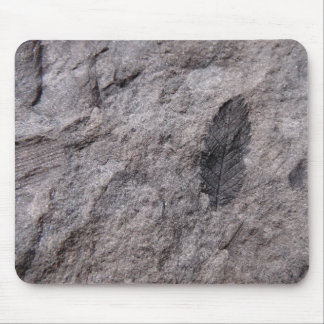350 millones de años. Impresión fósil de la foto Mouse Pads