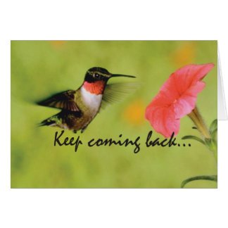 3520 Hummingbird Recovery Encouragement Cards