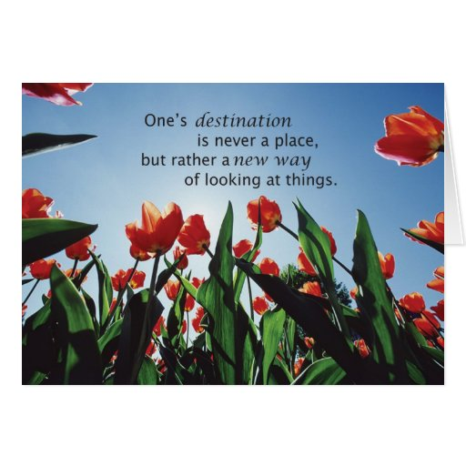3521 Tulips Destination Recovery Encouragement Cards