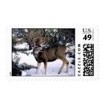 35-93-17 Deer Stamps