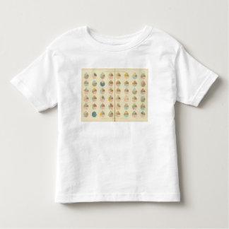 35 Church membership, states 1890 Toddler T-shirt