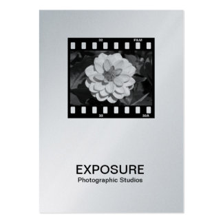 35mm Film Frame 01 (Platinum) Business Card Templates