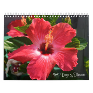 365 Day of Flowers Calendar
