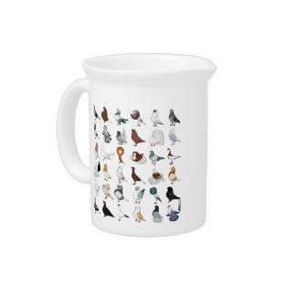 36 Pigeon Breeds Beverage Pitcher