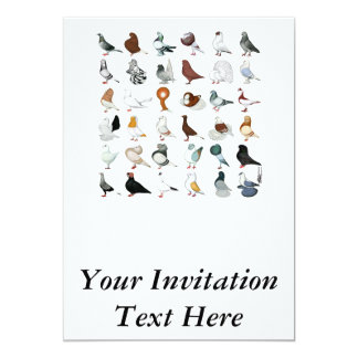 36 Pigeon Breeds Card