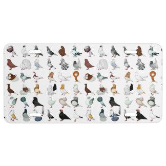 36 Pigeon Breeds License Plate