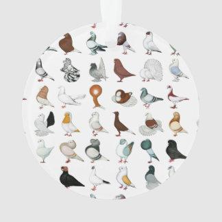 36 Pigeon Breeds Ornament