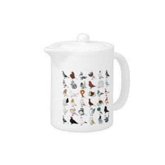 36 Pigeon Breeds Teapot
