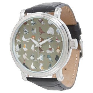 36 Pigeon Breeds Watches