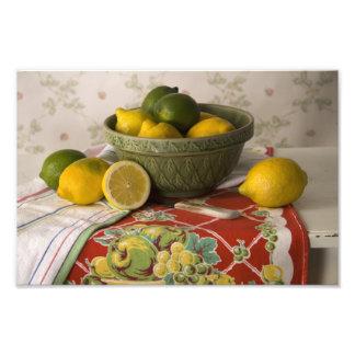 3728 Bowl of Lemons & Limes Still Life Photo Print