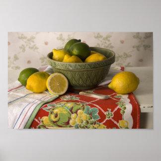 3728 Bowl of Lemons & Limes Still Life Poster