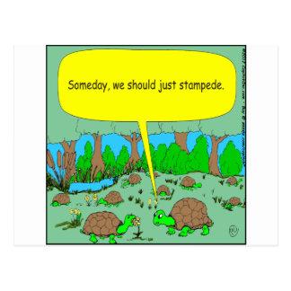 373 turtle stampede cartoon postcard