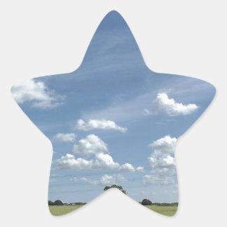 37.jpg pegatina en forma de estrella