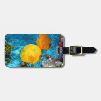 380037 fish fish exotic tropical yellow PHOTOGRAPH Bag Tag