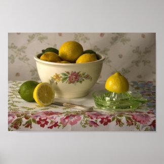 3856 Bowl of Lemons & Limes Still Life Poster