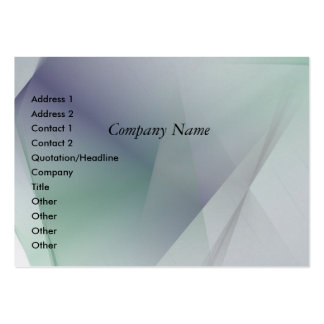 38 LARGE BUSINESS CARD
