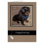 3913 feliz cumpleaños, perro, Dachshund Tarjeton