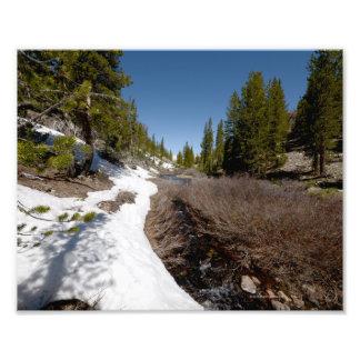 3938 Photograph of a mountain stream. 5/13
