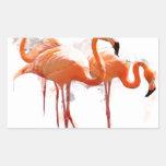 3947367_15662071_flamingo1_orig.png rectangular pegatina